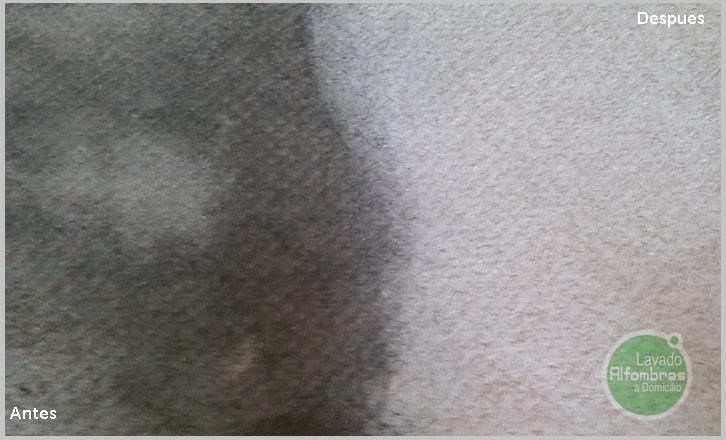 Limpieza de alfombras de lana good explora limpieza de - Limpieza de alfombras de lana ...